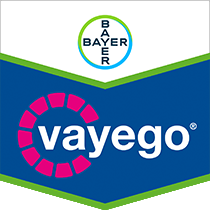 Vayego brand tag